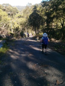 The steep descent into Garrigal National Park