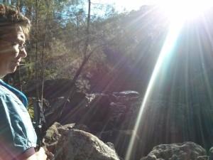 Early morning sunshine over McCarrolls Creek